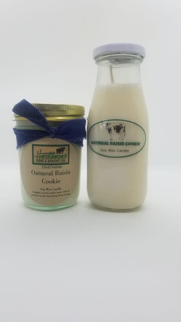 Oatmeal Raisin Cookie Soy Wax Candles